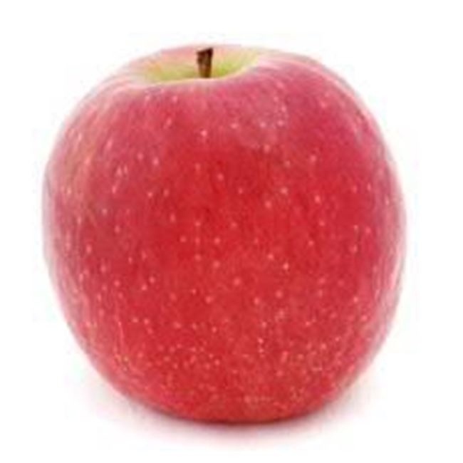 Picture of APPLE PINK LADY LARGE