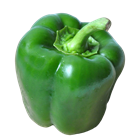 Picture of CAPSICUM GREEN