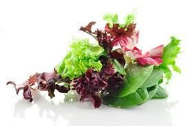 Picture of BABY SALAD LEAVES ORGANIC 120G