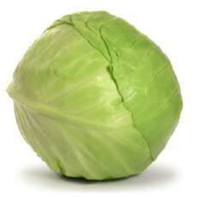 Picture of CABBAGE GREEN ORGANIC 1/2