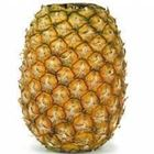 Picture of PINEAPPLE TOPLESS HALF